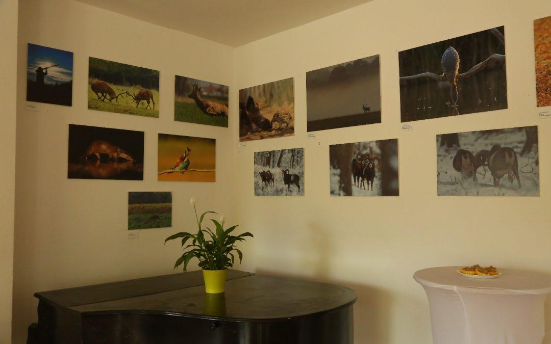 Fotókiállítás – Képeskönyv – természetről, vadászatról